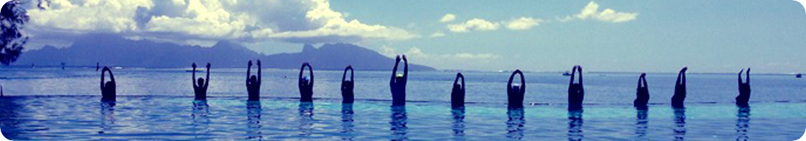 The spirit of Fareeva - Footer